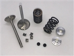 Valve & Spring Package, Stainless Steel, GX270s